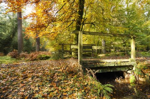 motorhome trips in autumn